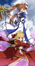 Fate/stay night,Fate/EXTRA,魔法少女リリカルなのは,魔法少女リリカルなのは StrikerS【セイバー・ブライド,セイバー(Fate/EXTRA),高町なのは】iPhone6 PLUS(1080×1920) #54390